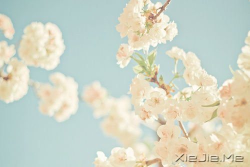 活得平和,才能在心里装下满满的幸福 (5)