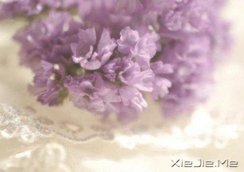 活得平和,才能在心里装下满满的幸福 (6)