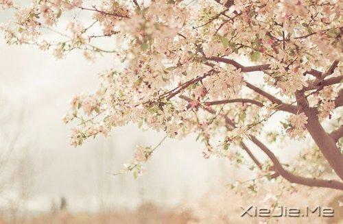 活得平和,才能在心里装下满满的幸福 (8)